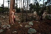 Bared Photos - Wood Nymph by Joe Kozlowski