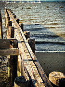 Pilings Photos - Wood Pilings by Colleen Kammerer