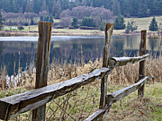 Split Rail Fence Framed Prints - Wood Split Rail Fence Near Lake Landscape Framed Print by Valerie Garner