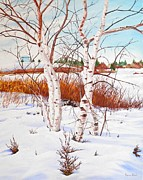 Thomas Faires Art - Woodbine Park Birches by Thomas Faires