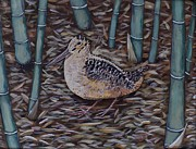 Woodcock Paintings - Woodcock in the Bamboo by Richard Goohs
