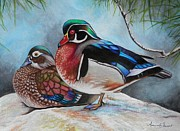 Wood Duck Painting Posters - WoodDucks Poster by Amanda  Stewart