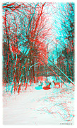 Brian Wallace - Wooded Path - Use Red...