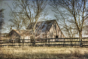Lisa Moore - Wooded Windom Barn