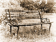 Patio Prints - Wooden Bench Print by Tom Druin