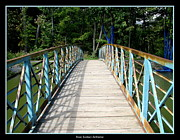 Rose Santuci-sofranko Posters - Wooden Bridge at Green Lake Poster by Rose Santuci-Sofranko