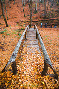 Okan YILMAZ - Wooden Bridge