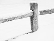 Nancy  de Flon - Wooden Fence in the Snow