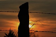 Robert D  Brozek - Wooden fence Post Sunset