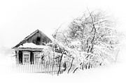 Snow Flakes Prints - Wooden House after Heavy Snowfall 1. Russia Print by Jenny Rainbow