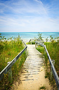 Sandy Shore Prints - Wooden walkway over dunes at beach Print by Elena Elisseeva