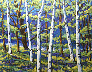 Canadian Prints - Woodland Birches Print by Richard T Pranke