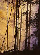 Landscape Greeting Card Painting Originals - Woodland Dawn by James Williamson