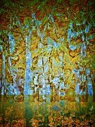 Woodland Dreams-no4 Print by Darla Wood