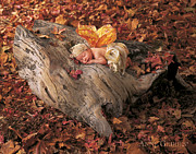 Autumn Leaves Photo Framed Prints - Woodland Fairy Framed Print by Anne Geddes