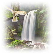 Owl Metal Prints - Woodland Falls Metal Print by Sharon Lisa Clarke