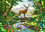 Woodland Harmony Print by Chris Heitt