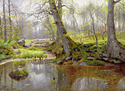 Naturalism Posters - Woodland Pond Poster by Peder Monsted
