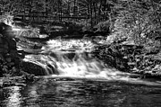 Rapids Digital Art Framed Prints - Woodland Stream Framed Print by Bill Cannon