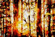 Barry Jones - Woodland Tapestry