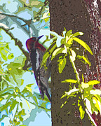 Linda  Smith - Woodpecker In Abstract