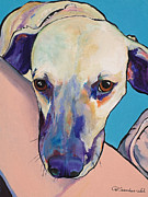 Great Dane Portrait Prints Paintings - Woody by Pat Saunders-White