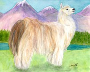 Woolly Framed Prints - Woolly Llama Camelid Cathy Peek Farm Animal Art Framed Print by Cathy Peek