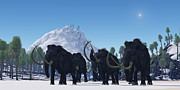Bass Digital Art - Woolly Mammoth by Corey Ford