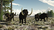 Paleoart Prints - Woolly Mammoths In The Prehistoric Print by Arthur Dorety