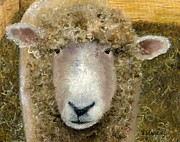 Sheep Prints - Wooly  Willy Print by Vicky Watkins