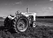 Auction Photo Prints - Work Horse-comfort King Tractor Print by Tom Druin