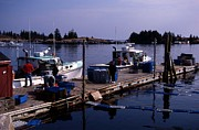 Lobsters Photos - Working Docks At Vinalhaven by Skip Willits