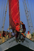 Sport Artist Photo Posters - Working The Sails Poster by Kathleen Struckle