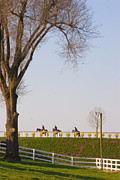 Keeneland Art - Workout by Sid Webb