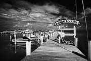World Wide Sportsman Framed Prints - World Wide Sportsman Bayside Marina Islamorada Florida Keys Usa Framed Print by Joe Fox