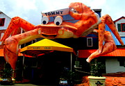 Tommy Posters - Worlds Largest Crab Poster by Randall Weidner