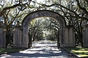 Savannah Posters - Wormsloe Plantation Gate 2X3 Poster by Carol Groenen