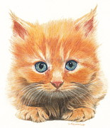 Cute Kitten Drawings Prints - Wot you lookin at Print by Gary Fernandez