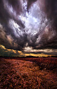 Phil Koch - Wrath