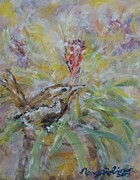 Wren Drawings - Wren by Nancy Robinson