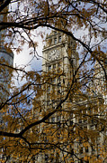 Wrigley Building In Autumn  Print by Leslie Leda