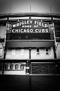 Famous Buildings Posters - Wrigley Field Chicago Cubs Sign in Black and White Poster by Paul Velgos