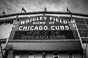 Exterior Prints - Wrigley Field Sign in Black and White Print by Paul Velgos