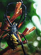 Arachnid Framed Prints - Writers Block Framed Print by Cara Bevan