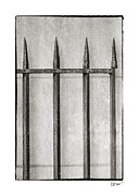 Old And New Prints - Wrought Iron Gate In Black And White Print by Brenda Bryant