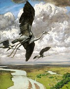 REPRODUCTION - Wundervogel
