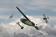 Biplane Prints - WW1 - Spoiled for Choice Print by Pat Speirs