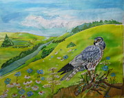 Silk Paintings - Wye Valley Hawk by Serendipitous Silks Fine Art
