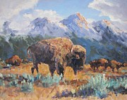 Robert Stump - Wyoming Buffalo
