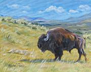 Melody Perez - Wyomings Wild Side